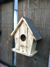 A Birdhouse as a Practice Canvas